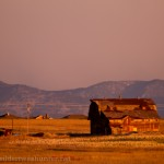 Old barn near CO7 and I25