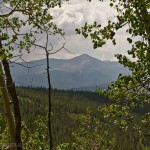 Mount Elbert through the Aspens
