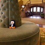 Hugsy relaxing in the lobby of the Hotel Colorado.