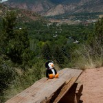 Hugsy resting on the way up to Doc Holliday's grave
