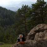 Hugsy on Lookout Mountain.