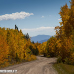 Boreas Pass road in September.